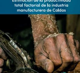 Estimación de la PTF de la industria manufacturera de Caldas