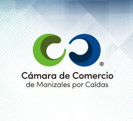 Notas Económicas 2015