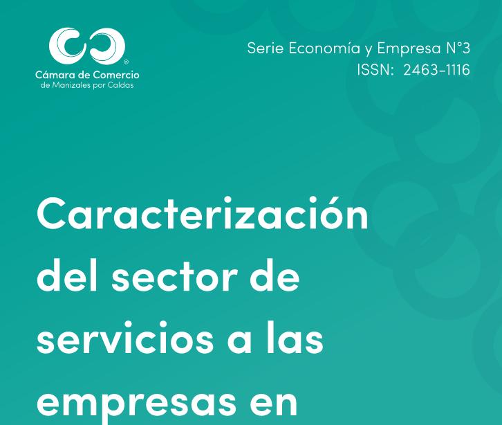 Caracterización del sector de servicios a las empresas en Manizales