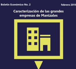 Caracterización de las grandes empresas de Manizales