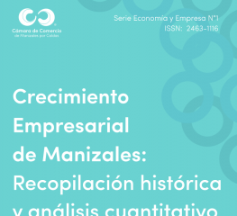 Crecimiento Empresarial de Manizales: Recopilación histórica y análisis cuantitativo