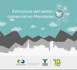Infografía Estructura del sector comercial de Manizales (noviembre 2016)