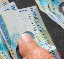 Notas Económicas 2014