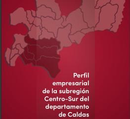 Perfil empresarial de la Subregión Centro-Sur del Departamento de Caldas