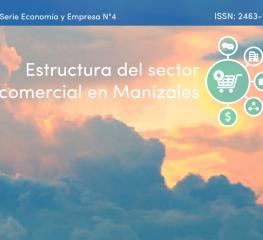 Estructura del sector comercial en Manizales